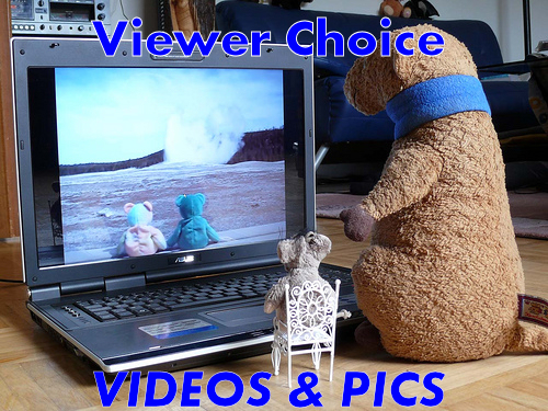 Viewer's Choice Videos & Pics