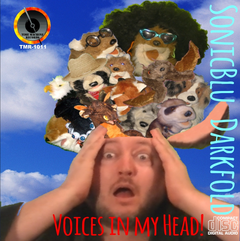 Voices in my Head! CD